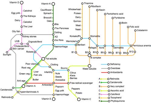The Vitamin Tube Map © Sally Chaffey 2015